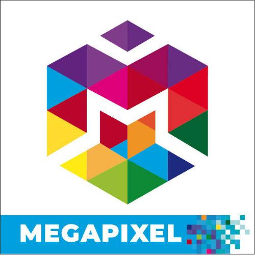 MEGAPIXEL X